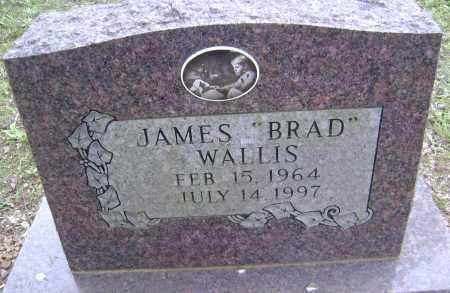 WALLIS, JAMES BRAD - Sharp County, Arkansas | JAMES BRAD WALLIS - Arkansas Gravestone Photos