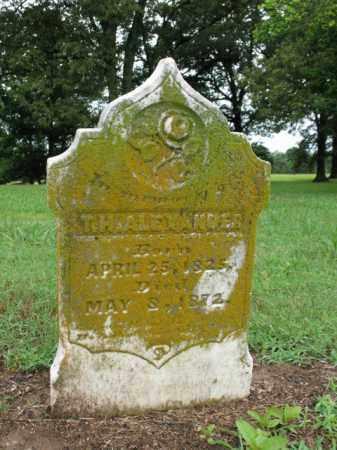 ALEXANDER, T H - St. Francis County, Arkansas | T H ALEXANDER - Arkansas Gravestone Photos