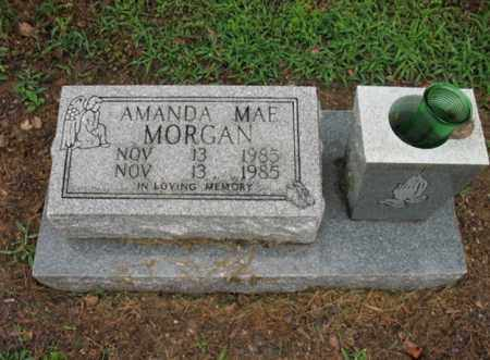 MORGAN, AMANDA MAE - St. Francis County, Arkansas | AMANDA MAE MORGAN - Arkansas Gravestone Photos