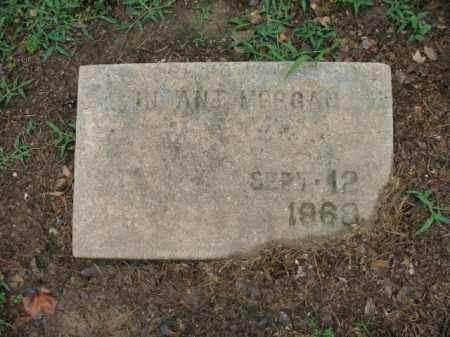 MORGAN, INFANT - St. Francis County, Arkansas   INFANT MORGAN - Arkansas Gravestone Photos
