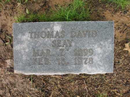 SEAY, THOMAS DAVID - St. Francis County, Arkansas | THOMAS DAVID SEAY - Arkansas Gravestone Photos