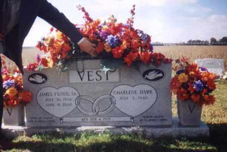 VEST, JAMES FLOYD - St. Francis County, Arkansas   JAMES FLOYD VEST - Arkansas Gravestone Photos