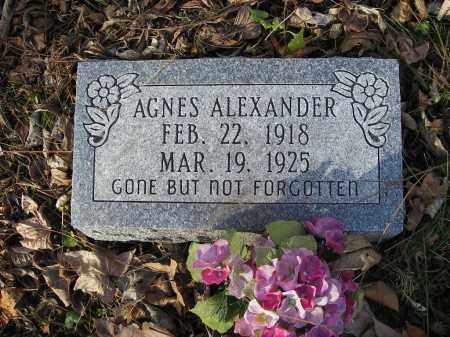 ALEXANDER, AGNES - Stone County, Arkansas | AGNES ALEXANDER - Arkansas Gravestone Photos