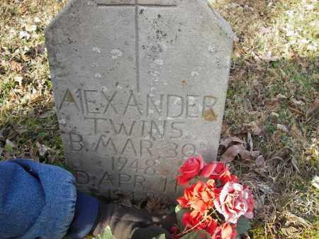 ALEXANDER, TWINS - Stone County, Arkansas   TWINS ALEXANDER - Arkansas Gravestone Photos