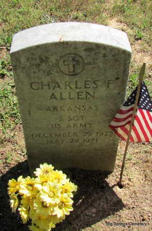 ALLEN  (VETERAN), CHARLES F - Stone County, Arkansas | CHARLES F ALLEN  (VETERAN) - Arkansas Gravestone Photos