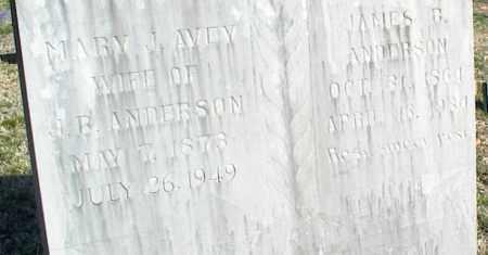 AVEY ANDERSON, MARY J. - Stone County, Arkansas | MARY J. AVEY ANDERSON - Arkansas Gravestone Photos