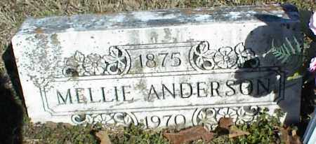 ANDERSON, MELLIE - Stone County, Arkansas | MELLIE ANDERSON - Arkansas Gravestone Photos
