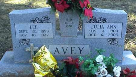AVEY, LEE - Stone County, Arkansas | LEE AVEY - Arkansas Gravestone Photos