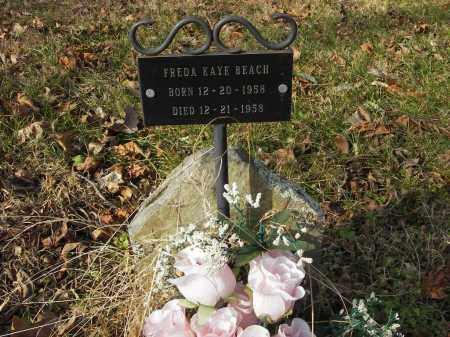 BEACH, FREDA - Stone County, Arkansas | FREDA BEACH - Arkansas Gravestone Photos