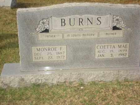 BURNS, MONROE F. - Stone County, Arkansas | MONROE F. BURNS - Arkansas Gravestone Photos