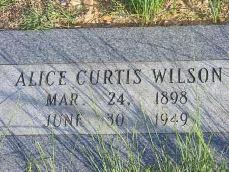 CURTIS, ALICE - Stone County, Arkansas | ALICE CURTIS - Arkansas Gravestone Photos
