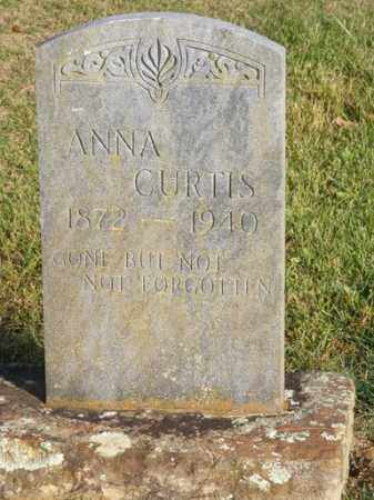 CURTIS, MARY ANN - Stone County, Arkansas | MARY ANN CURTIS - Arkansas Gravestone Photos