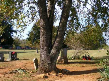 CURTIS, N.C. - Stone County, Arkansas | N.C. CURTIS - Arkansas Gravestone Photos