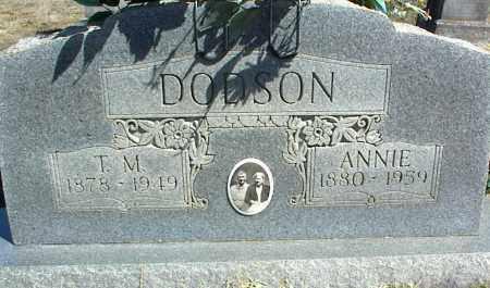 DODSON, ANNIE - Stone County, Arkansas | ANNIE DODSON - Arkansas Gravestone Photos