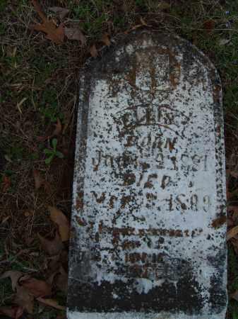ELLIS, UNKNOWN - Stone County, Arkansas | UNKNOWN ELLIS - Arkansas Gravestone Photos