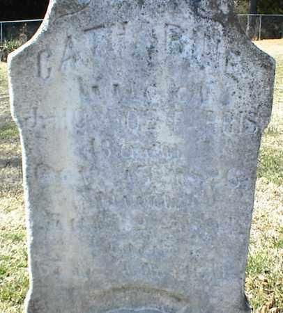 FARRIS, CATHARINE - Stone County, Arkansas | CATHARINE FARRIS - Arkansas Gravestone Photos