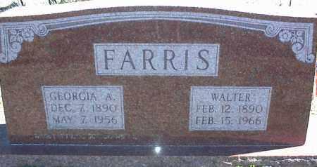 FARRIS, GEORGIA A. - Stone County, Arkansas | GEORGIA A. FARRIS - Arkansas Gravestone Photos