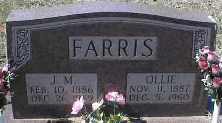 FARRIS, J. M. - Stone County, Arkansas   J. M. FARRIS - Arkansas Gravestone Photos