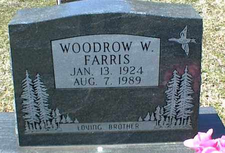 FARRIS, WOODROW W. - Stone County, Arkansas | WOODROW W. FARRIS - Arkansas Gravestone Photos