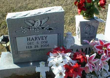 GAMMILL, HARVEY - Stone County, Arkansas   HARVEY GAMMILL - Arkansas Gravestone Photos