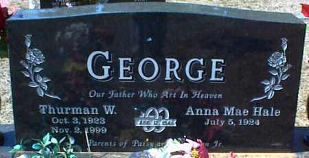 GEORGE, THURMAN W. - Stone County, Arkansas | THURMAN W. GEORGE - Arkansas Gravestone Photos
