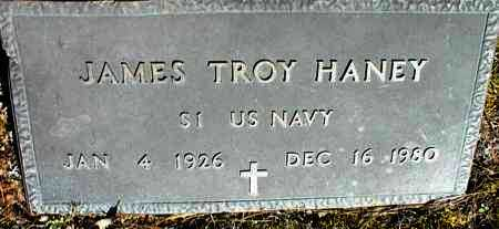 HANEY (VETERAN), JAMES TROY - Stone County, Arkansas | JAMES TROY HANEY (VETERAN) - Arkansas Gravestone Photos