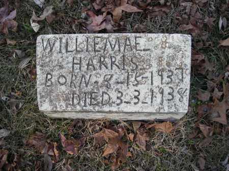 HARRIS, WILLIEMAE - Stone County, Arkansas | WILLIEMAE HARRIS - Arkansas Gravestone Photos
