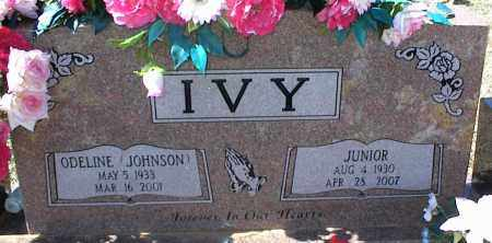 IVY, JUNIOR - Stone County, Arkansas | JUNIOR IVY - Arkansas Gravestone Photos