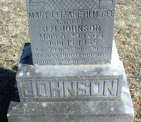 JOHNSON, MARY ELIZABETH - Stone County, Arkansas | MARY ELIZABETH JOHNSON - Arkansas Gravestone Photos