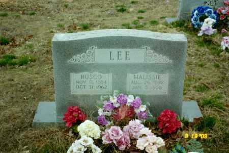 LEE, MALISSIE - Stone County, Arkansas   MALISSIE LEE - Arkansas Gravestone Photos