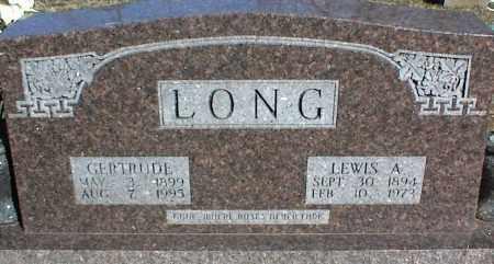 LONG, LEWIS A. - Stone County, Arkansas | LEWIS A. LONG - Arkansas Gravestone Photos
