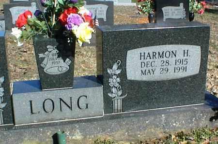 LONG, HARMON H. - Stone County, Arkansas | HARMON H. LONG - Arkansas Gravestone Photos