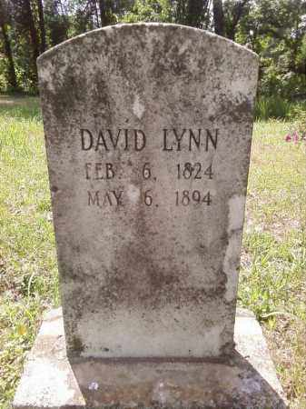 LYNN, DAVID - Stone County, Arkansas | DAVID LYNN - Arkansas Gravestone Photos