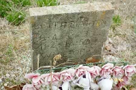 MARTIN, EDITH - Stone County, Arkansas | EDITH MARTIN - Arkansas Gravestone Photos