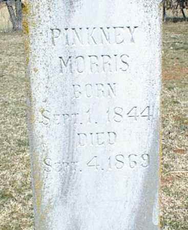 MORRIS, PINKNEY - Stone County, Arkansas | PINKNEY MORRIS - Arkansas Gravestone Photos