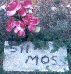 MOSS, STEPHEN HENRY - Stone County, Arkansas   STEPHEN HENRY MOSS - Arkansas Gravestone Photos