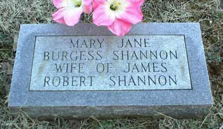 BURGESS SHANNON, MARY JANE - Stone County, Arkansas | MARY JANE BURGESS SHANNON - Arkansas Gravestone Photos