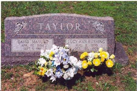 TAYLOR, DAVID MANUEL - Stone County, Arkansas | DAVID MANUEL TAYLOR - Arkansas Gravestone Photos