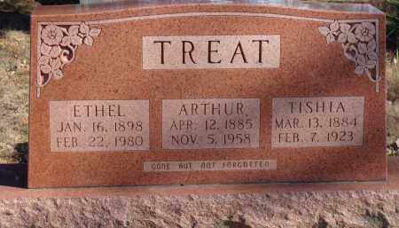 TREAT, ARTHUR RANKIN - Stone County, Arkansas | ARTHUR RANKIN TREAT - Arkansas Gravestone Photos