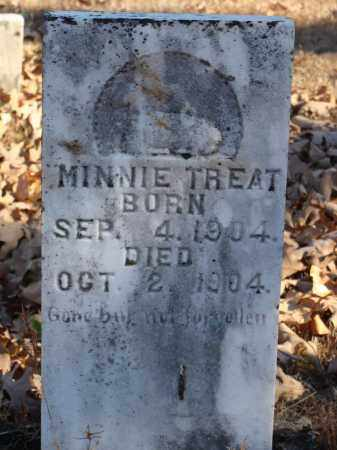 TREAT, MINNIE - Stone County, Arkansas   MINNIE TREAT - Arkansas Gravestone Photos
