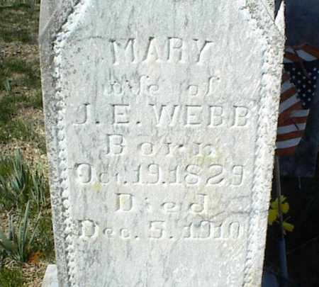 WEBB, MARY - Stone County, Arkansas | MARY WEBB - Arkansas Gravestone Photos
