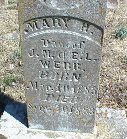 WEBB, MARY H. - Stone County, Arkansas | MARY H. WEBB - Arkansas Gravestone Photos