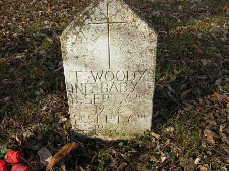 WOODY, E - Stone County, Arkansas | E WOODY - Arkansas Gravestone Photos