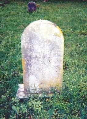YOUNGER, WILSON L. - Stone County, Arkansas | WILSON L. YOUNGER - Arkansas Gravestone Photos