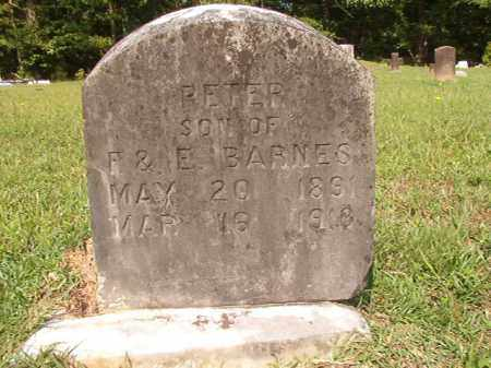 BARNES, PETER - Union County, Arkansas   PETER BARNES - Arkansas Gravestone Photos