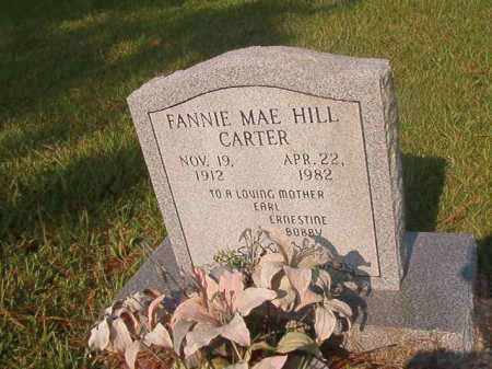 CARTER, FANNIE MAE - Union County, Arkansas | FANNIE MAE CARTER - Arkansas Gravestone Photos