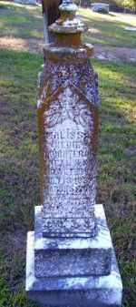 FRISBY, MALISSA MEDDIE - Union County, Arkansas | MALISSA MEDDIE FRISBY - Arkansas Gravestone Photos