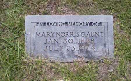 NORRIS GAUNT, MARY - Union County, Arkansas | MARY NORRIS GAUNT - Arkansas Gravestone Photos