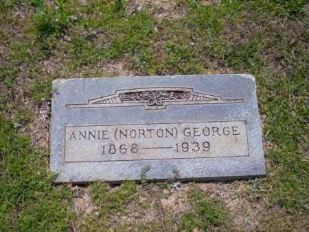 NORTON GEORGE, ANNIE - Union County, Arkansas   ANNIE NORTON GEORGE - Arkansas Gravestone Photos