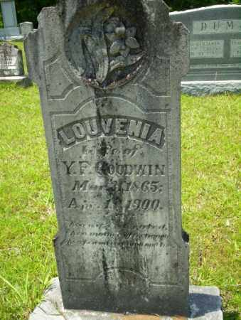 GOODWIN, LOUVENIA - Union County, Arkansas | LOUVENIA GOODWIN - Arkansas Gravestone Photos